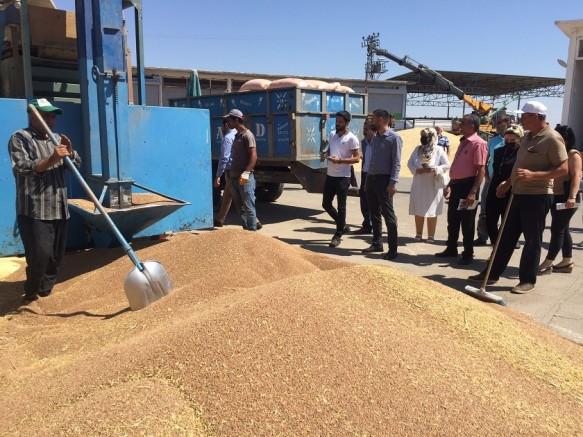 DEVA'dan Buğday Pazarına 'Tarımda Eylem Planı' ziyareti