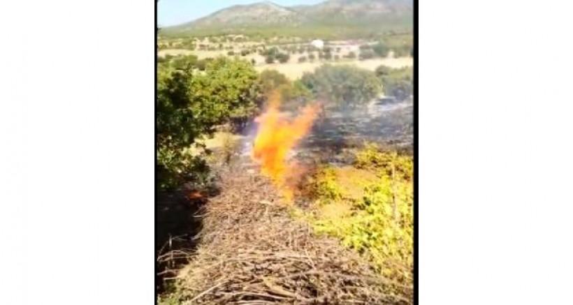 Kulp'ta, bağ alanında yangın çıktı