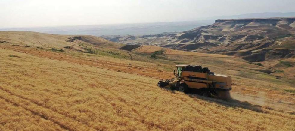 Tarımsal kuraklık endişesi yok